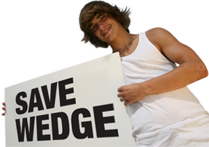 save-wedge